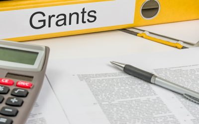 Small Grants for Theses and Dissertations- Call for Applications: Issued September 2017